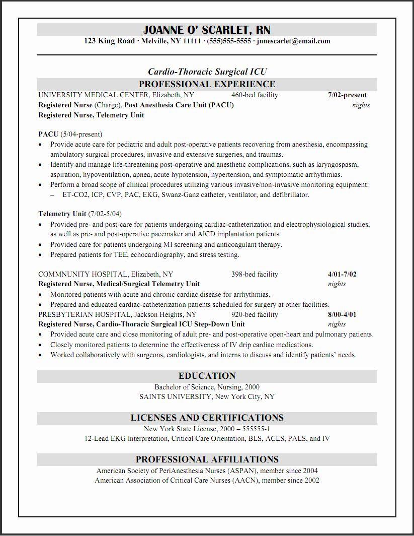 travel nurse resume tips