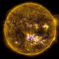 Magnetic Properties of the Sun
