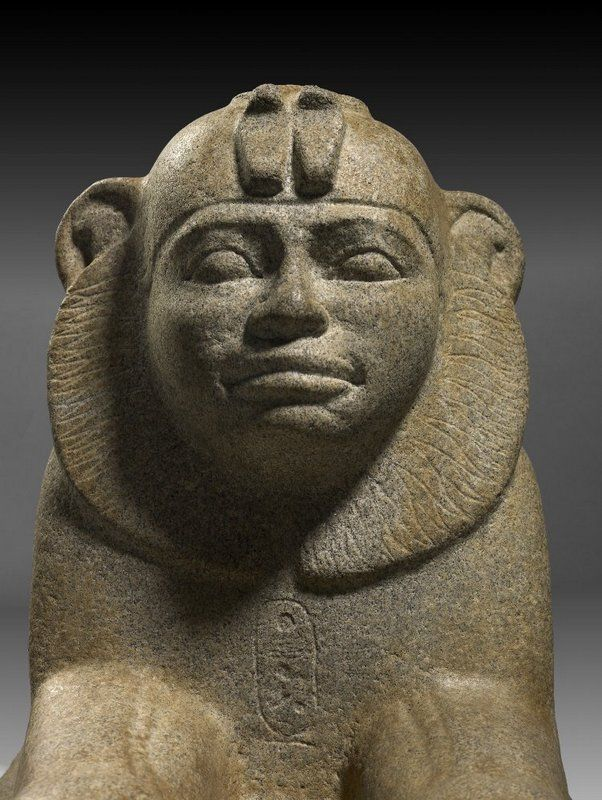 The Black Pharaoh In Denmark Ancient Egyptian Art Egyptian Art Ancient Egyptian