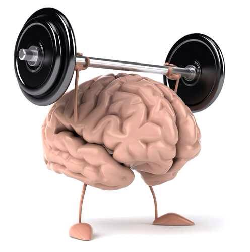 All the hard work turned my brain into a little powerlifter