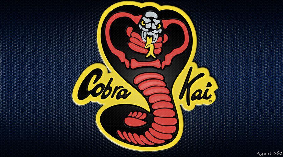 Pin on Cobra Kai and the Karate Kid