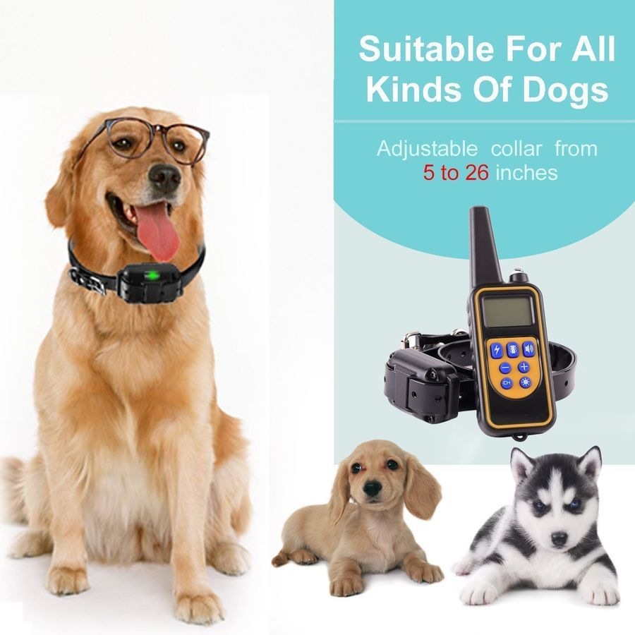 Rechargeable Electric Remote Dog Training Shock Collar Waterproof
