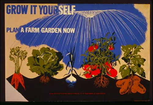 Grow your own French Potager: a list of seeds and ingredients, suitable for Southeastern gardens.   Poster:  1942 WPA by Herbert Bayer (public domain)