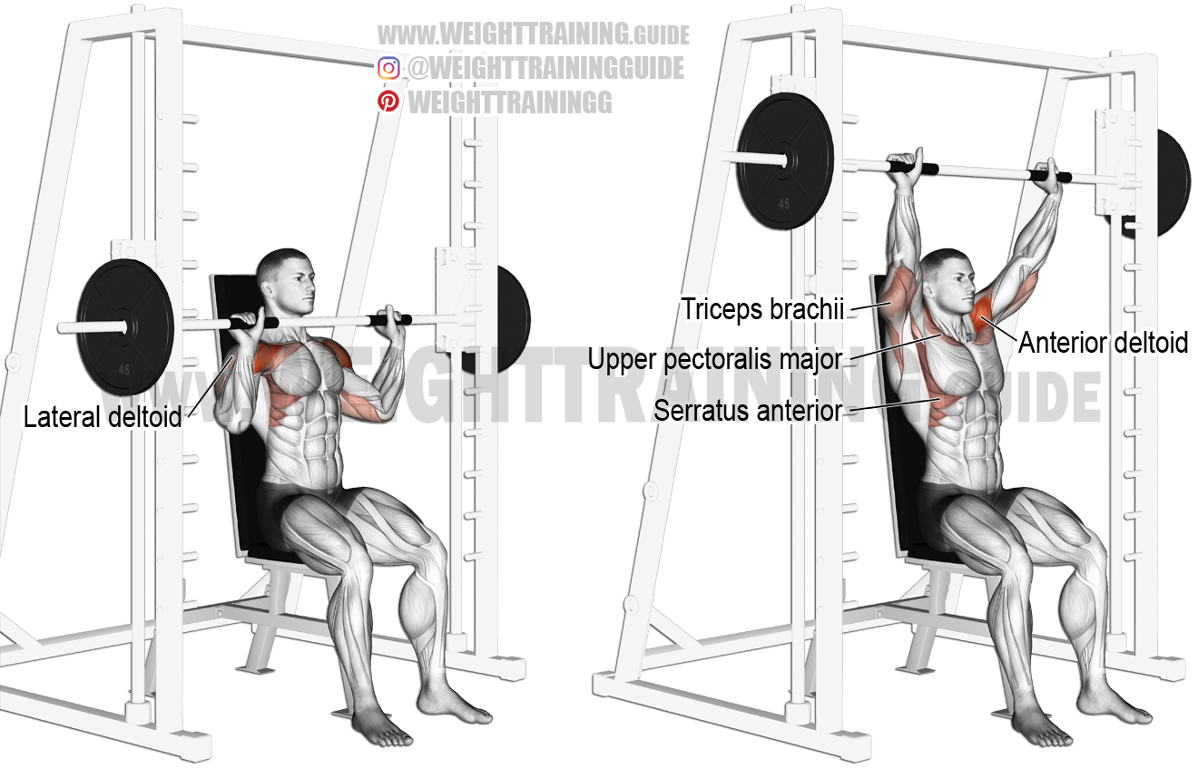 Smith Machine Seated Overhead Press