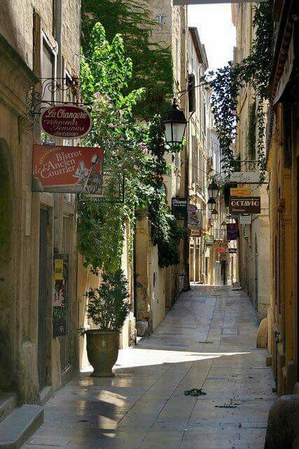 Rue de l'Ancien Courrier, the oldest street in Montpellier, France. | Beautiful places, Places around the world, Wonderful places