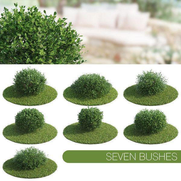 3d Seven Bushes Bush 3d Landscape 3d Model