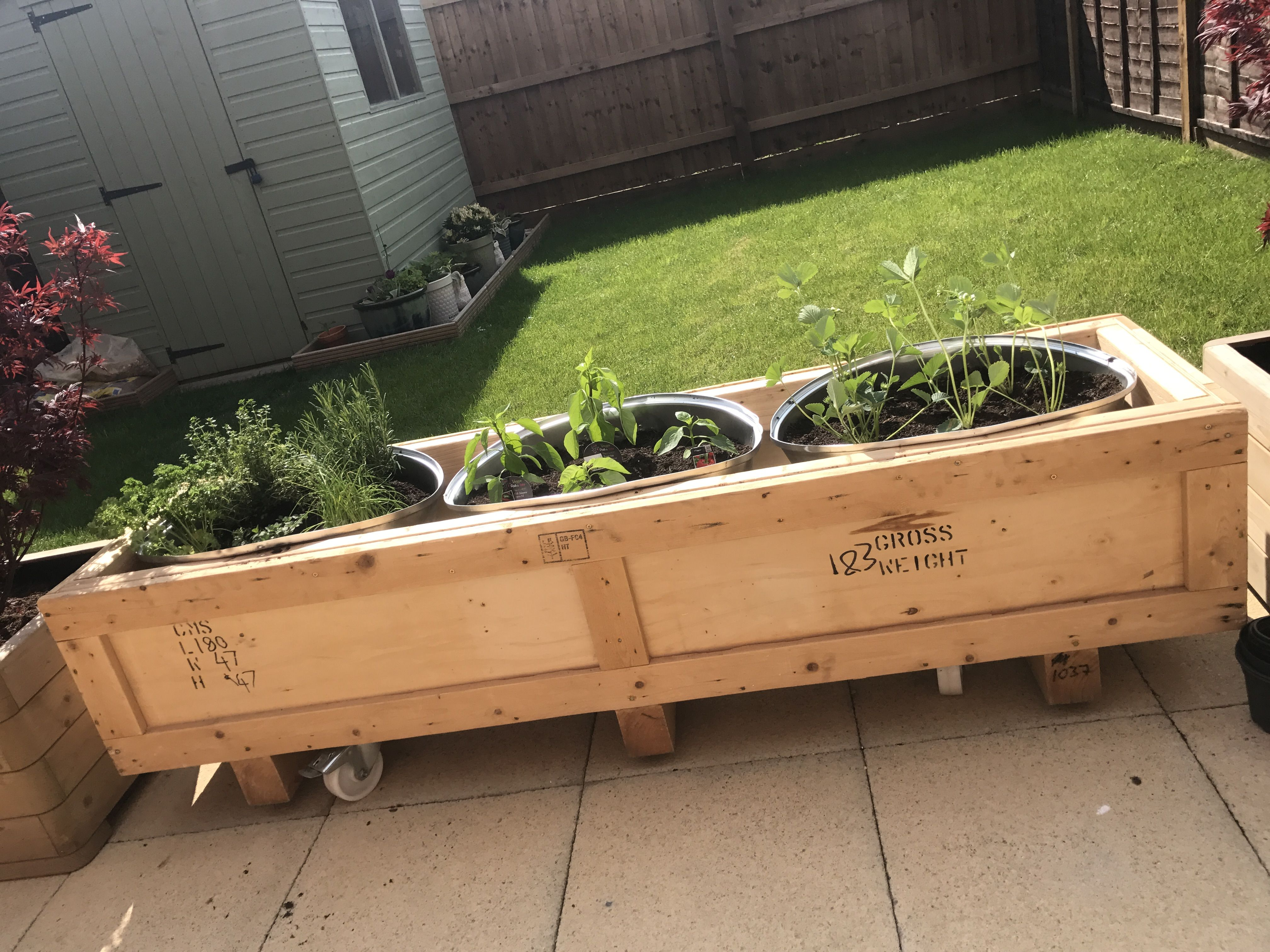 Reclaimed shipping crate and lamp shade herb garden