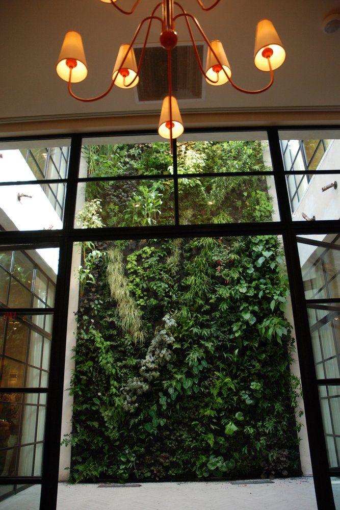 Capitol Clothing Shop, Charlotte NC Vertical Garden Patrick Blanc