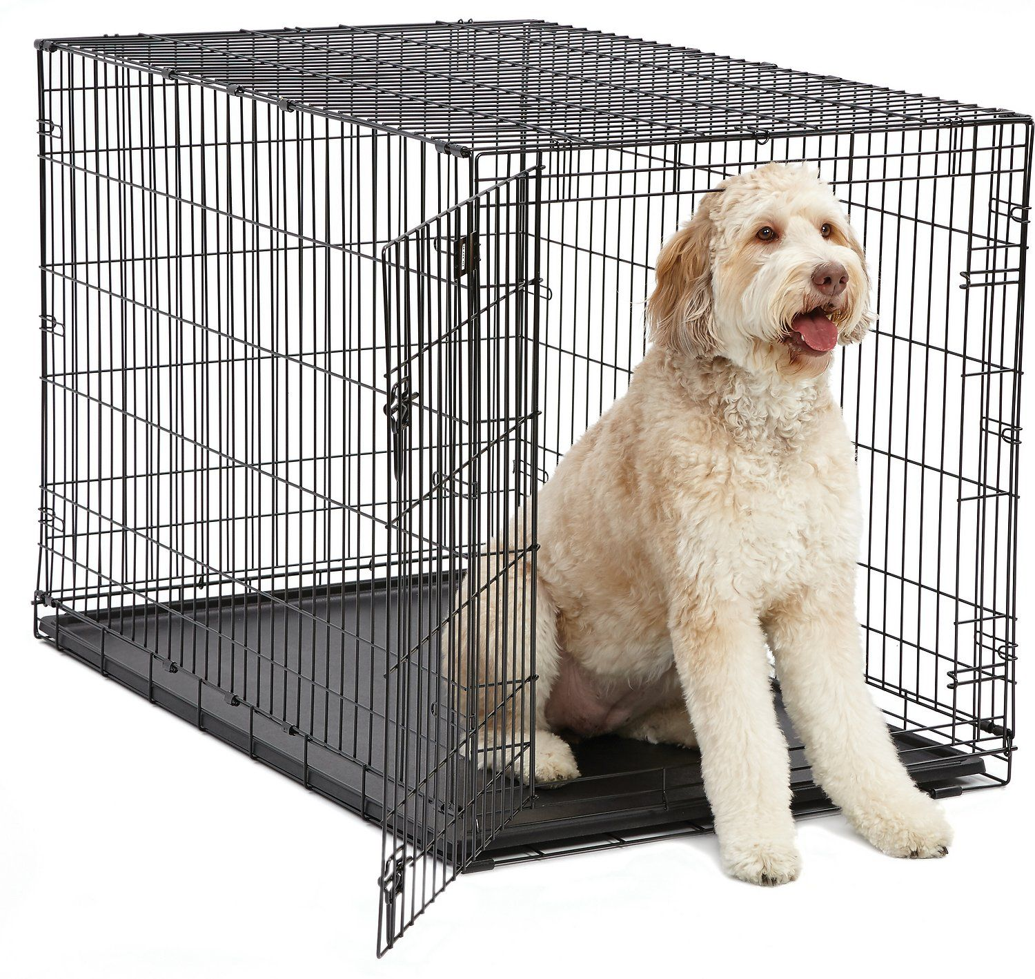 Midwest Icrate Single Door Fold Carry Dog Crate 48 In Chewy Com Dog Cages Dog Crate Dog Boarding Near Me