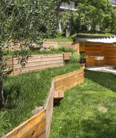 Amenagement D Un Jardin En Pente A L Ombre Des Oliviers Jardin En Pente Amenagement Jardin Comment Amenager Son Jardin