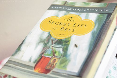 Secret Life of Bees Bee book, Book worth reading, Book worms