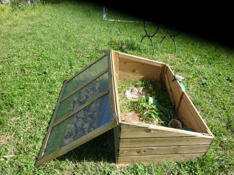 Cabane tortue de terre recherche google enclos tortue for Amenagement jardin pour tortue
