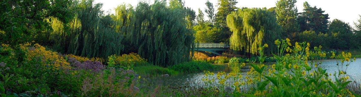 Chicago Botanic Garden Glencoe North Chicago Suburbs