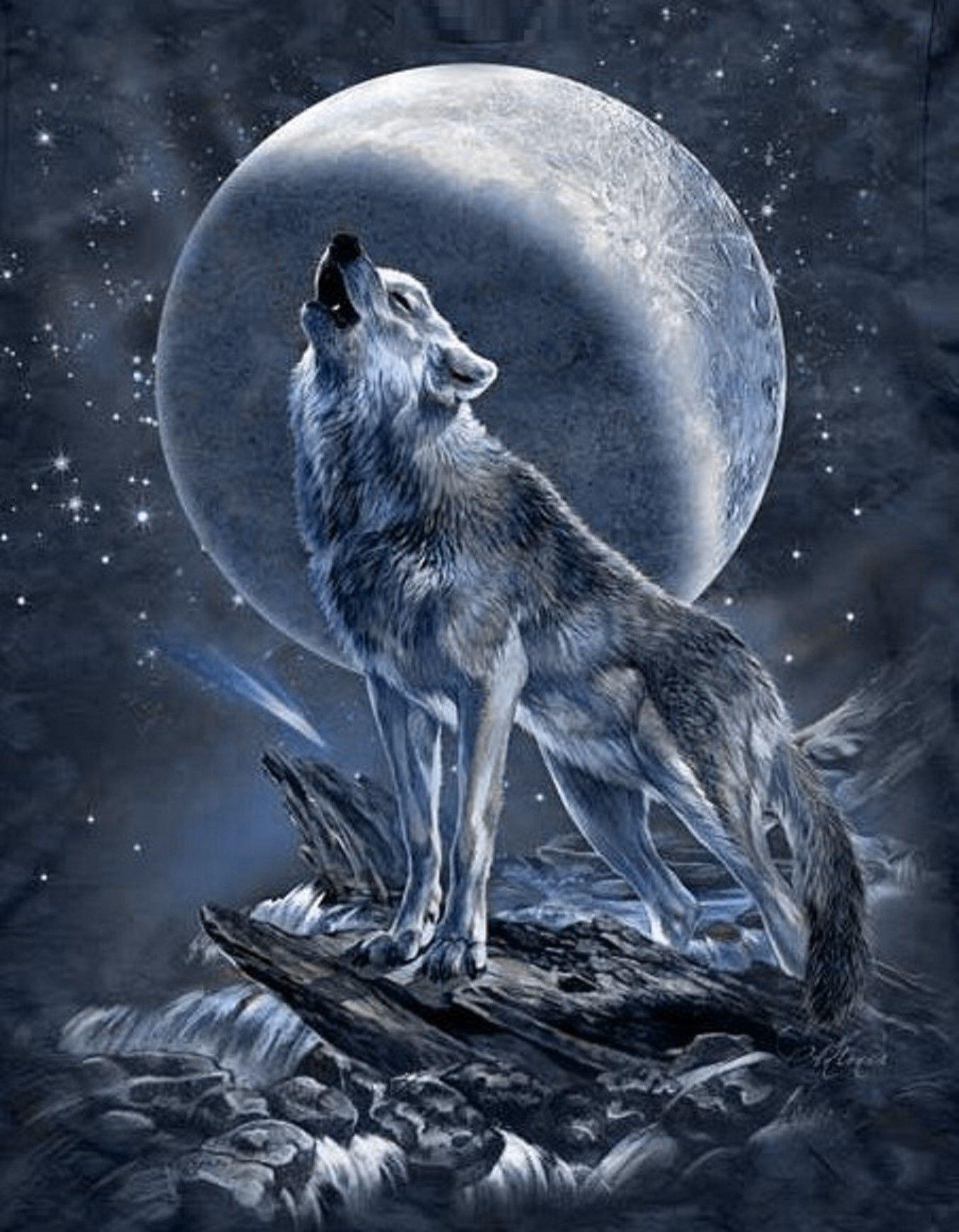 wolf  mond  moon  wolf malen wolf zeichnung
