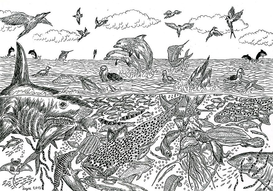 11 year old child prodigy creates stunningly detailed drawings bursting with life 9 14