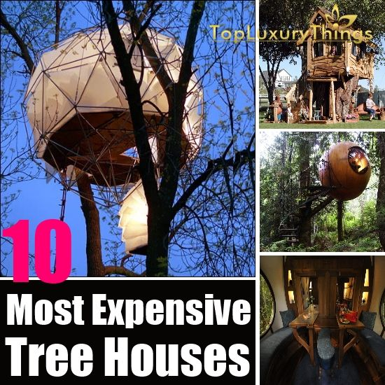 Most Expensive Tree House In The World 10 most expensive tree houses in the world | diy top luxury things