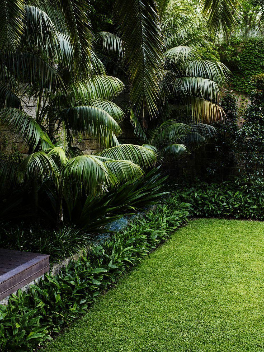Landscape Gardening Jobs New Zealand One Landscape Gardening Evening Course Abov Front Garden Landscape Tropical Landscape Design Tropical Garden Design