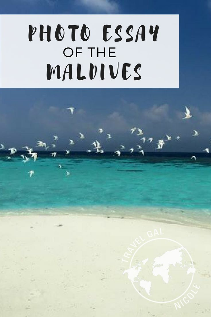 My first Airbnb experience in the Maldives | Islands and