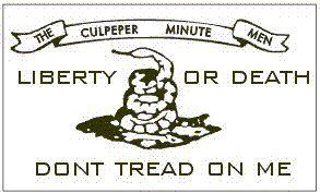 Culpeper Minute Men Flag 3 X 5 New 3x5 Don T Tread By Www Wildflags Com 4 99 Culpeper Flag 3 X5 Super Polyester Canvas Dont Tread On Me Gadsden Flag Flag