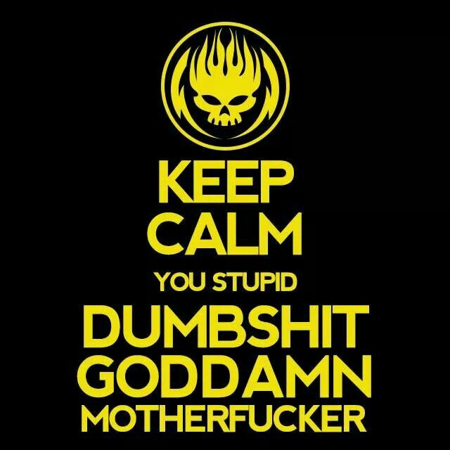 Almost Every Morning Commute Bad Habit By The Offspring The Offspring Lyrics You Stupid Keep Calm