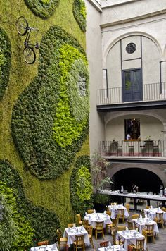 Green Wall- Mexico City- love the bicycle! I trust it's secured well. (Hey waiter, there's a bike in my soup!)