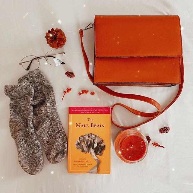 Photo of Cosy Winter Necessities (@thetinyherbivore) • Fotos y videos de Instagram