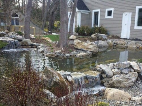 Natural pool with bog regen zone and rainwater harvesting for Design of water harvesting pond