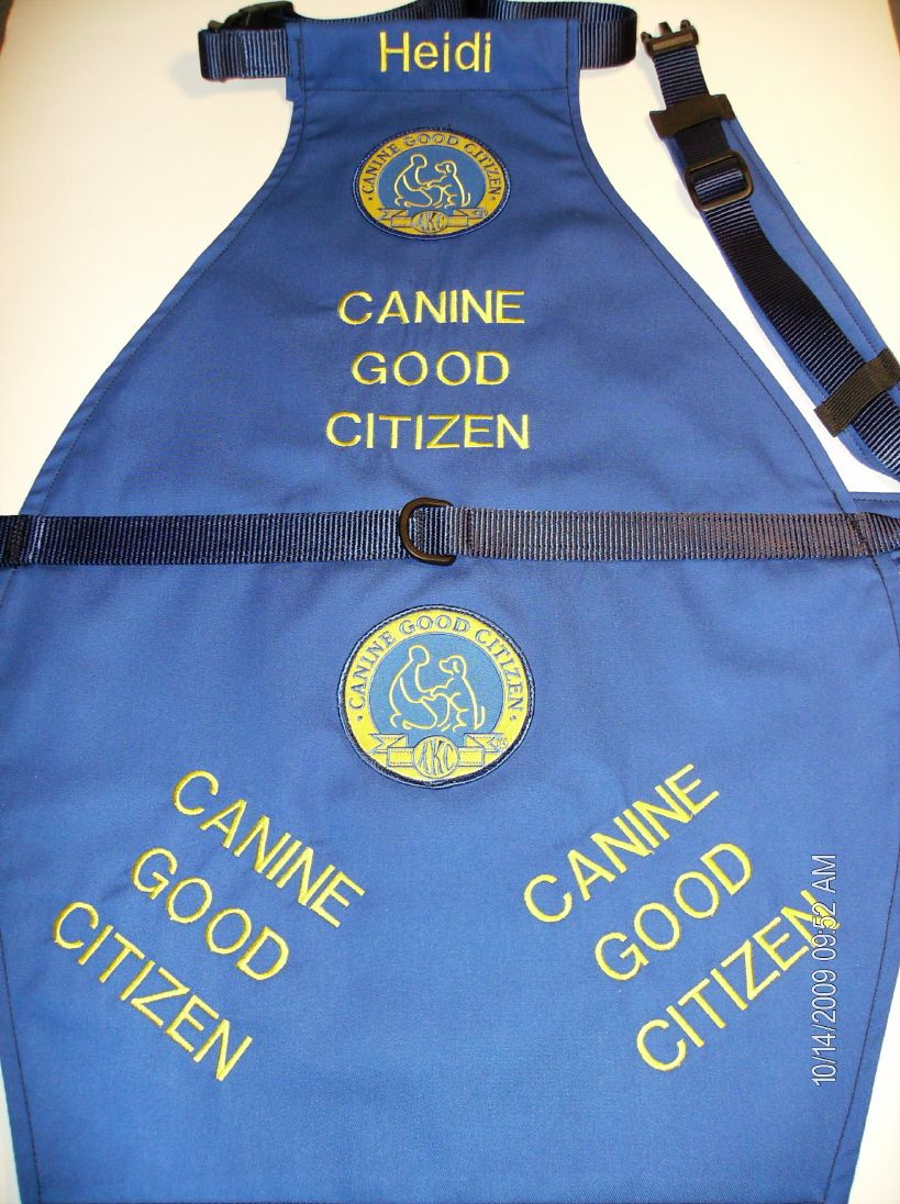 Canine Good Citizen Vest With Images Dog Activities Therapy