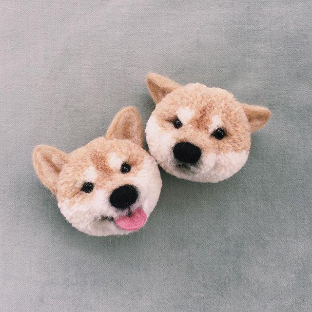 . うれシバ! . They are both delighted ! . #柴犬 #ヒコーキ耳 #ぽんぽんブローチ #shiba #trikotri…