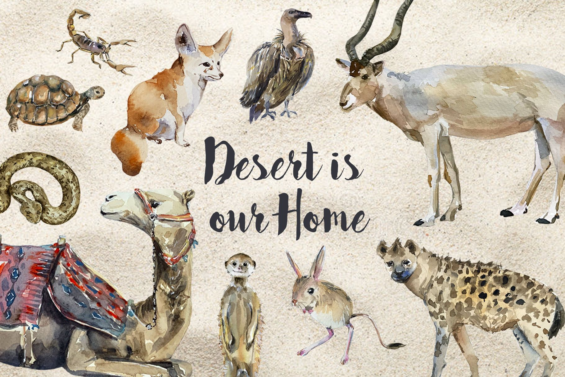 Desert Animals Watercolor Clip Art And Poster Etsy In 2021 Watercolor Animals Desert Animals Watercolor Clipart