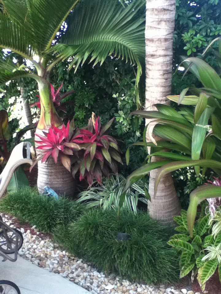 Tropical Retreat Design Full And Lush Tropical Landscaping Front Yard Landscaping Beautiful Gardens