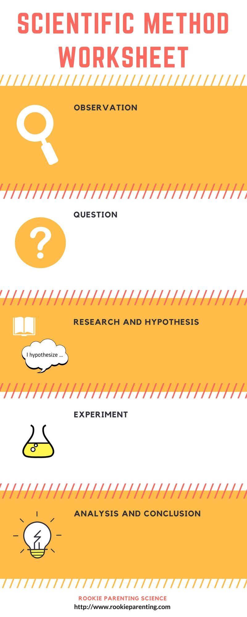 Worksheets Scientific Method Worksheet Kids zoey and sassafras scientific method steps examples worksheet worksheet