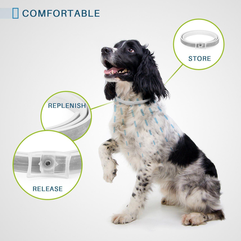 Jmxus Dog Flea Collar Flea And Tick Collar For Dogs Allergy Free