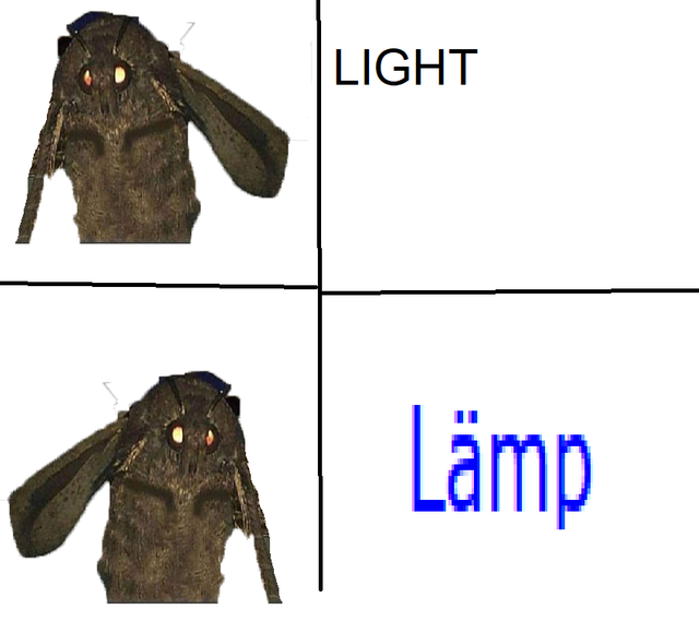 27 Moth Memes That Will Bring You Towards The Light Clown Meme Memes Moth