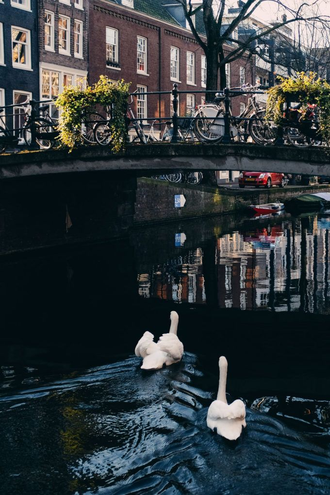Amsterdam Photo Diary and Travel Guide | Jess Ann Kirby