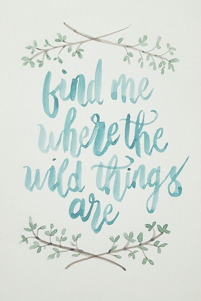 Find me where the wild things are