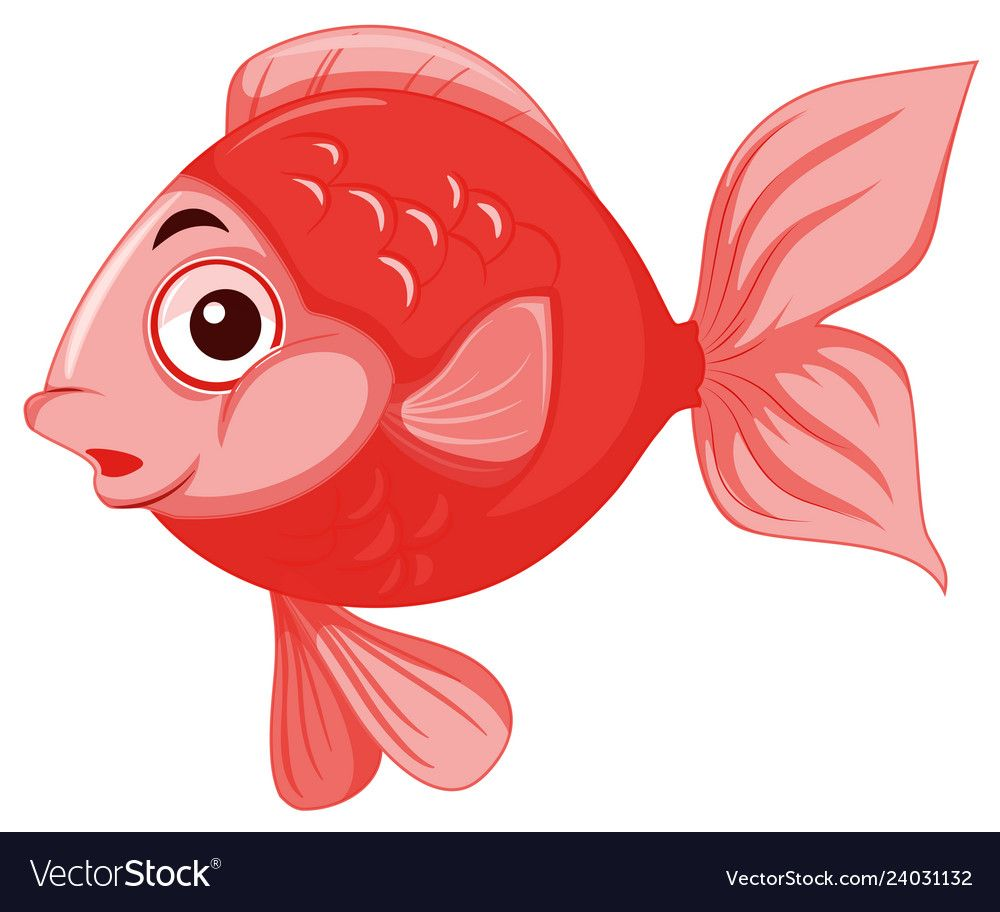 Red Isolated Gold Fish Illustration Download A Free Preview Or High Quality Adobe Illustrator Ai Eps Pdf And High Fish Illustration Cartoon Fish Fish Vector