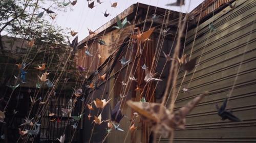 From David Altobelli's film Breathturn. http://vimeo.com/9369965 #colorgrade #film