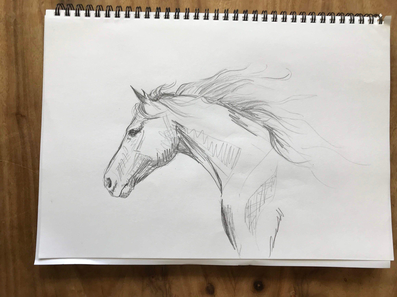 Original Black White Horse Drawing Hand Drawn Artwork Pencil
