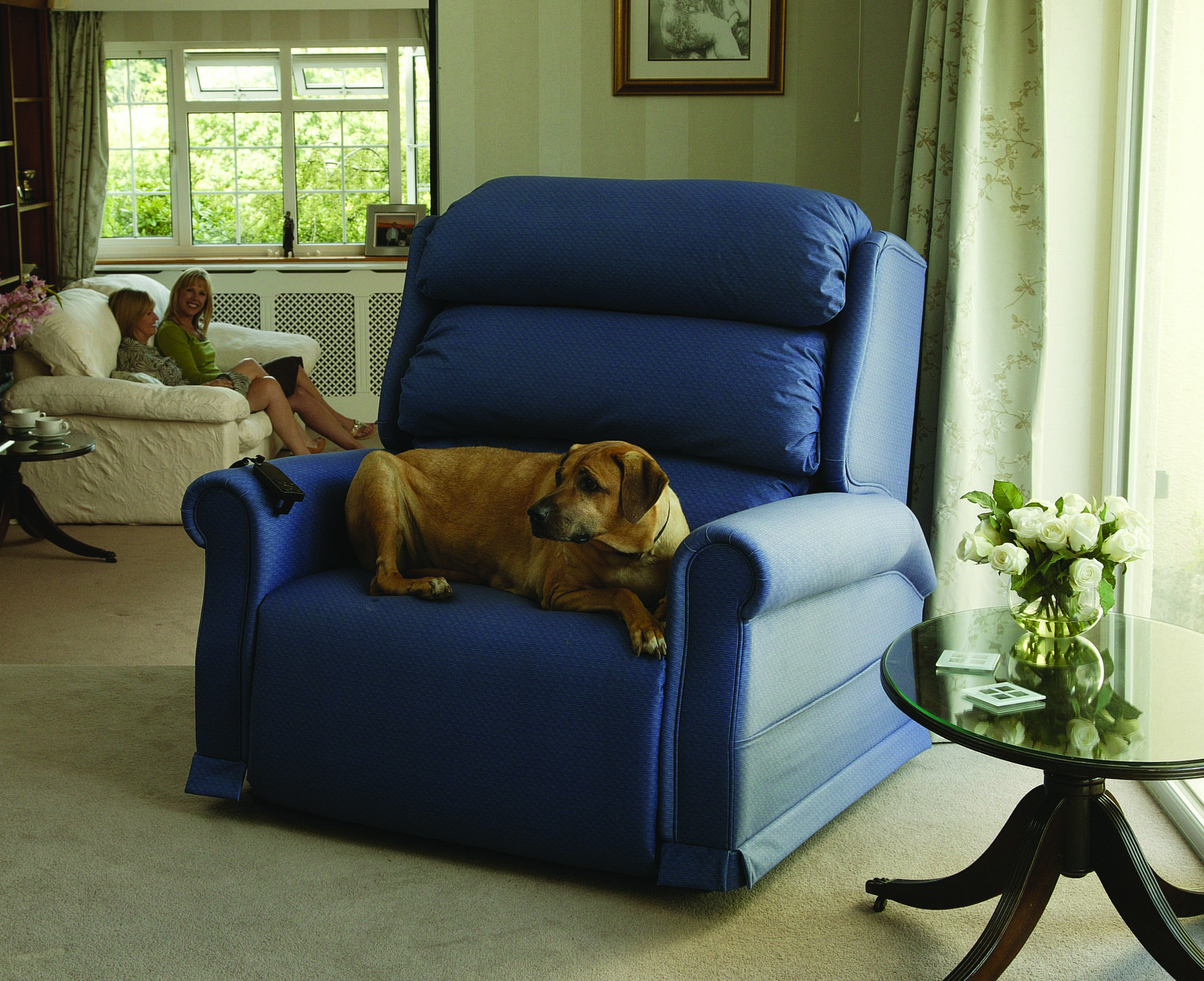 Bariatric riser recliner chair extra wide recliner