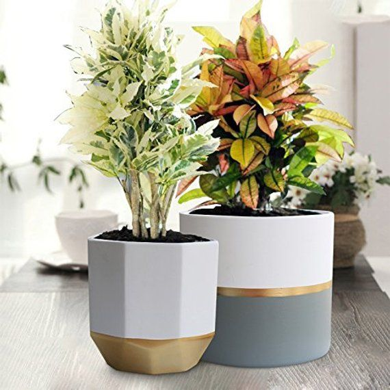 2 Pack 6 Inch Indoor Plant Pots White Ceramic Planters With Gold And Grey Detailing