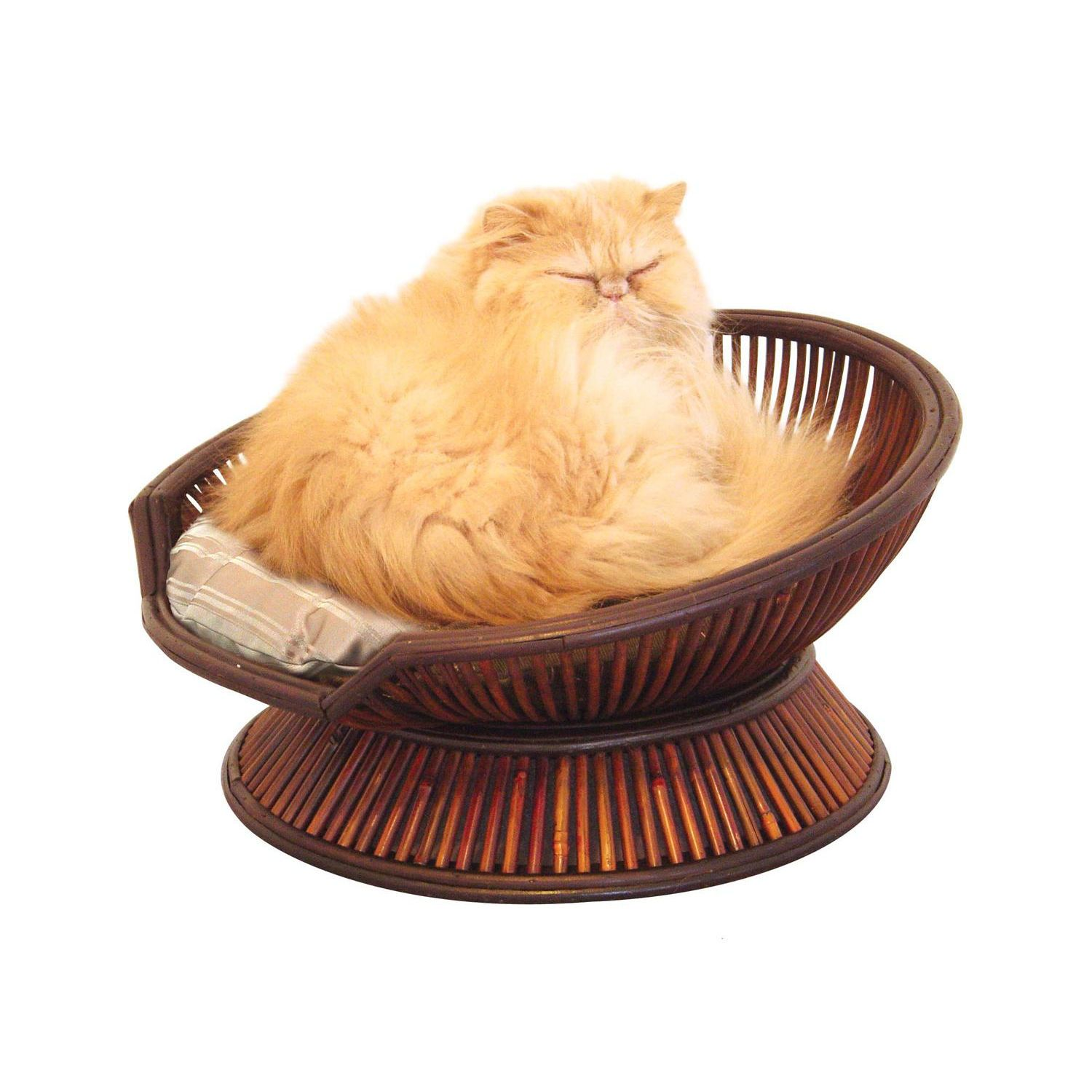Pin by Marian Hardy on Really Cute Animals Cat bed