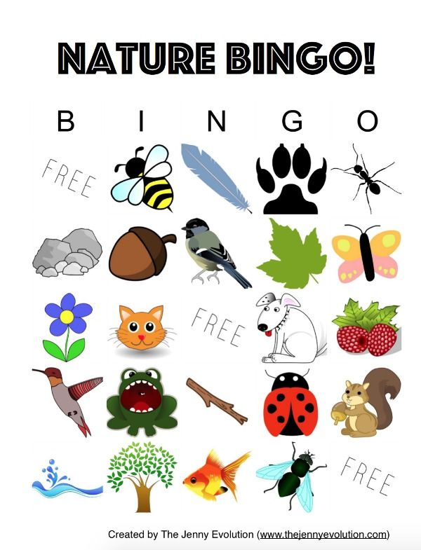 nature bingo for kids printable mommy evolution free activities for kids bingo for kids. Black Bedroom Furniture Sets. Home Design Ideas