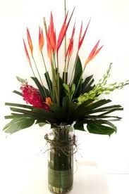 Image result for Cover picture arrangement of heliconia flowers
