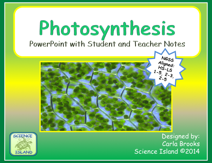Photosynthesis powerpoint notes and videos high school biology designed for high school biology this powerpoint presentation is comprehensive enough to use without a textbook beautiful photographs and diagrams will fandeluxe Gallery