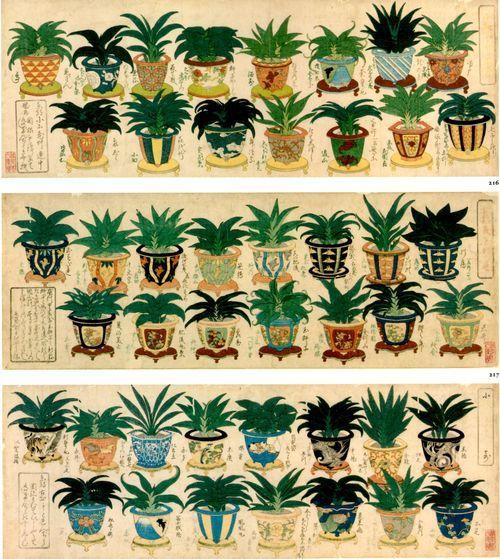 くまとサボテン   日本美術, 花 絵, アートのアイデア