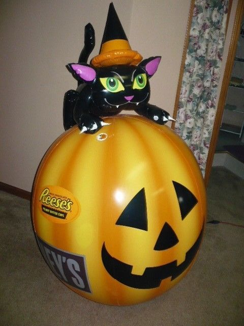 Hershey S Inflatable Cat