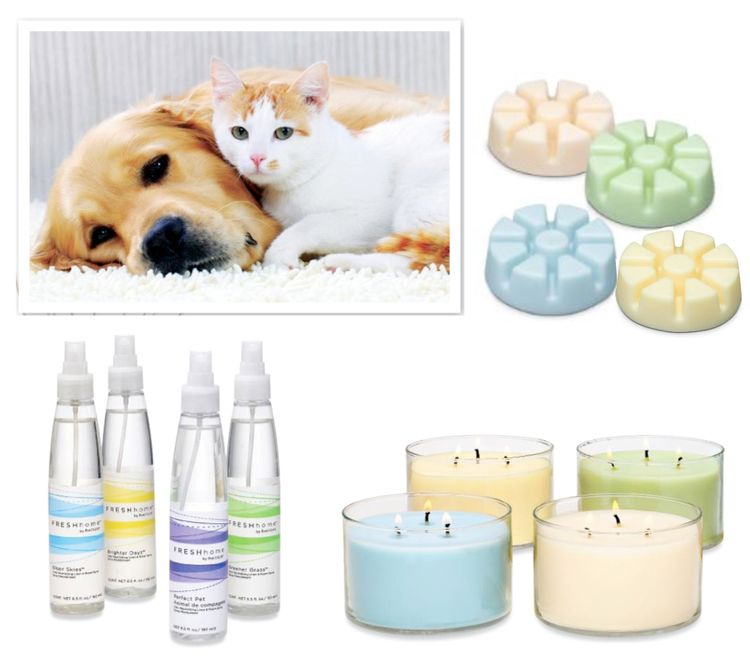 Pet Friendly Home Decor: Fresh Home By PartyLite Keeps Your Home Pet Friendly