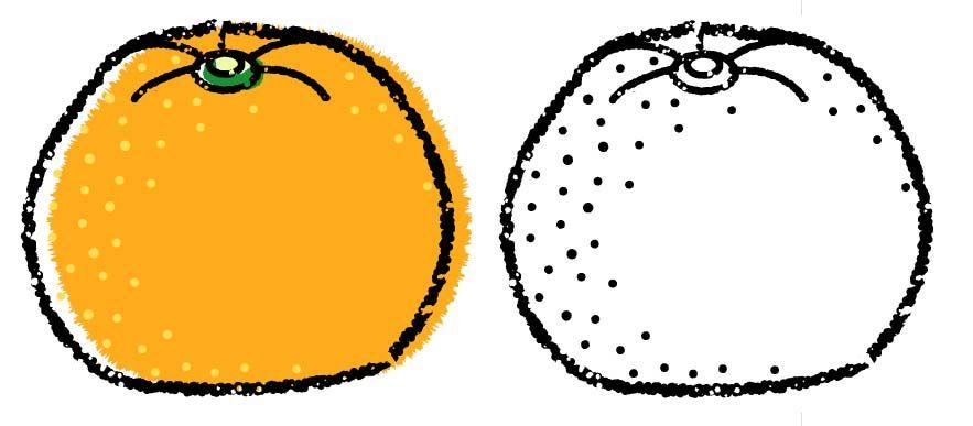 かわいいみかんイラスト無料素材 白黒とカラーの2種類 おしゃれな手書き風みかんフリーイラスト Mandarin Orange Clipart Mandarin Orange Free Illustration イラスト みかん 無料 イラスト