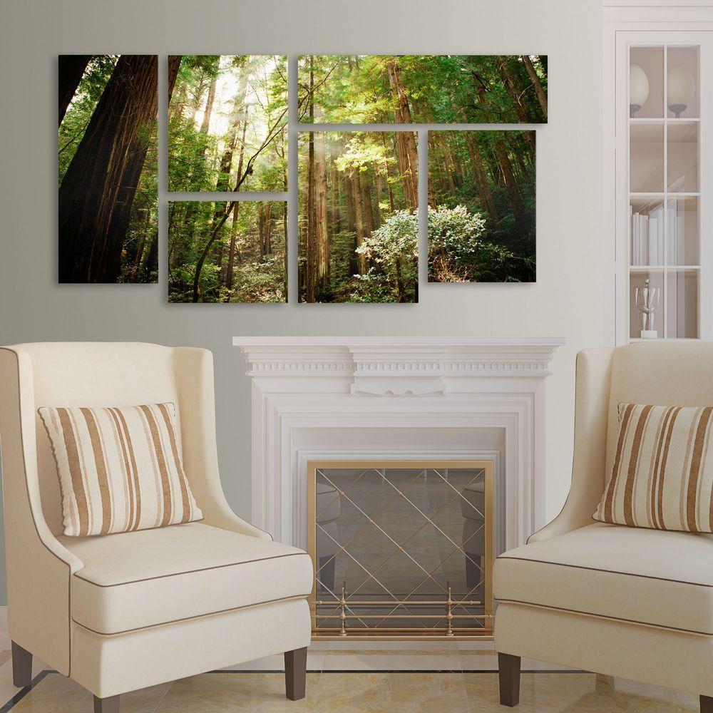 Muir Woods by Ariane Moshayedi 6-Panel Art Set